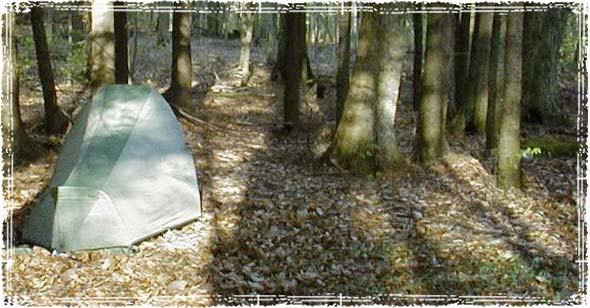 Remote Camping in the Woods