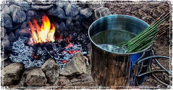 Pine Needle Tea Over a Fire