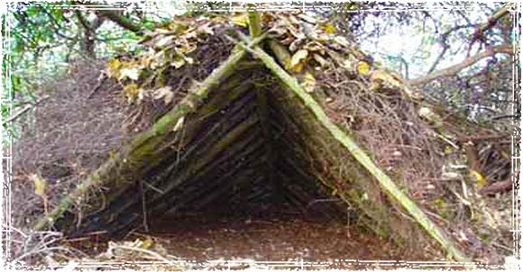 Man Made Shelters : Six of the top wilderness survival shelters
