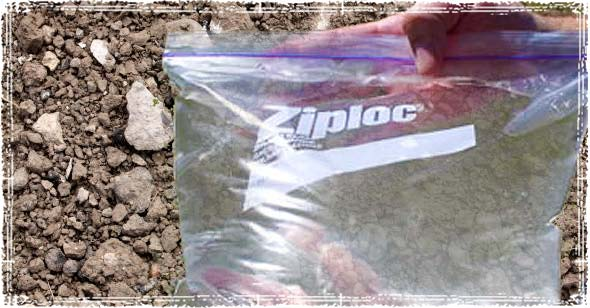 Plastic Ziploc Storage Bag filled with Water