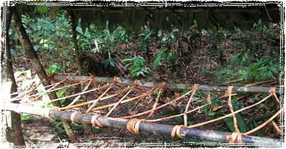 How To Make A Survival Fire Bed