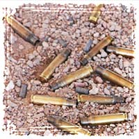 ammo cartridges