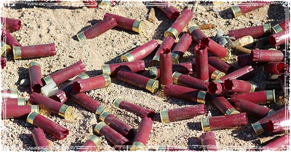 multiple bullet shells laying on the ground