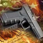 Gun on the Constitution