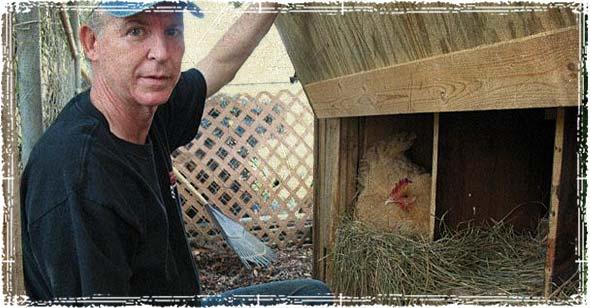 Roswell's Chicken Man - Andrew Wordes