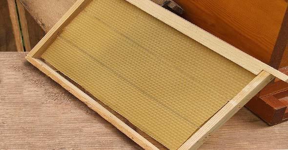 A Langstroth frame