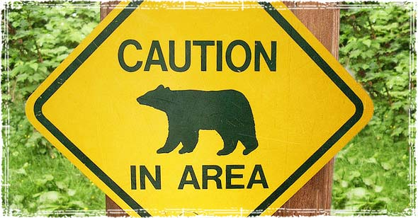 Bear Country Trail Warning Sign