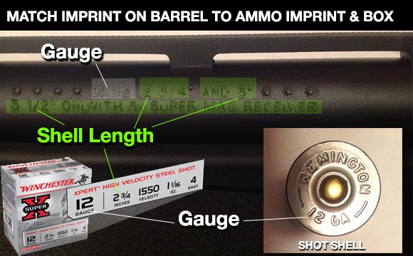 12 gauge shells matched to barrel