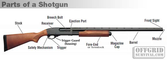Firearm Basics: Basic Parts of a Gun on