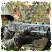 huntingforest