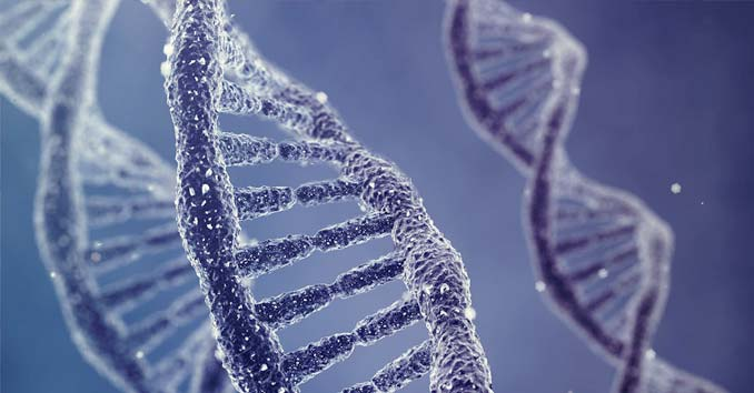 Police Across The Country Collecting Dna For Federal