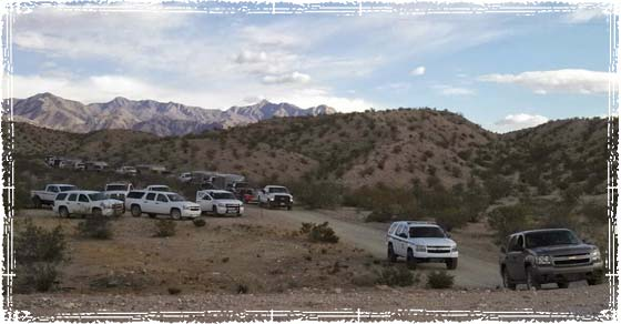 Federal Government Raiding Bundy's Farm Stealing His Cattle