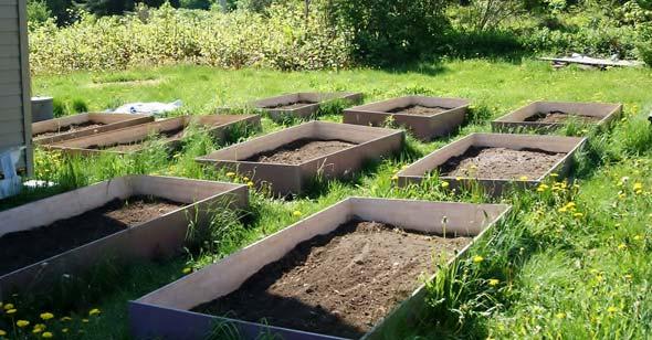 Garden Area in Boxes