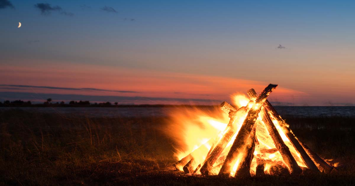 How to Start a Fire: The Art and Science of Fire Building