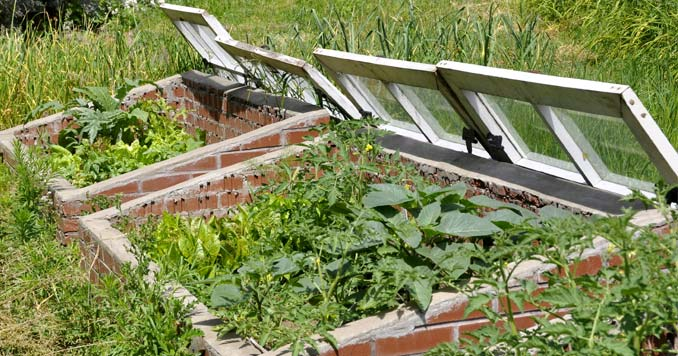 What a cold frame garden container looks like