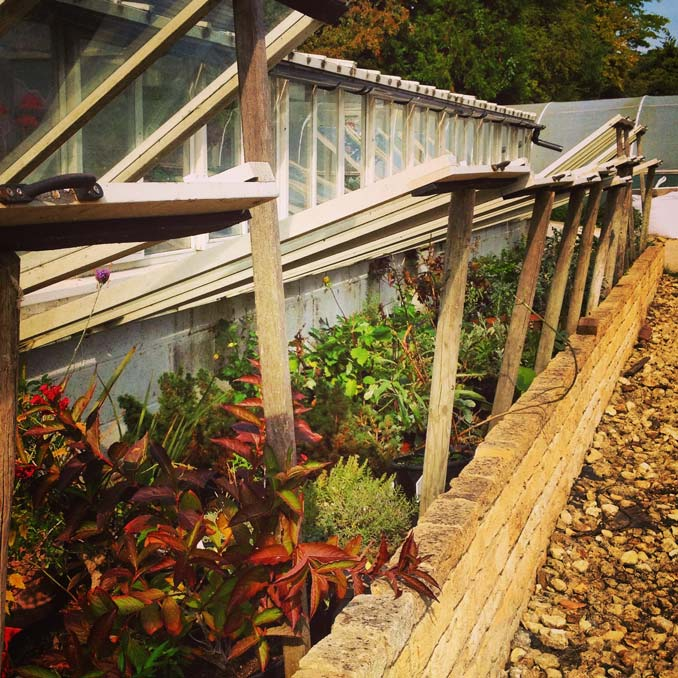 A large cold frame garden wall