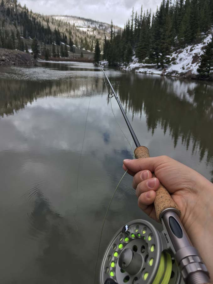 Fly Fishing out in the country